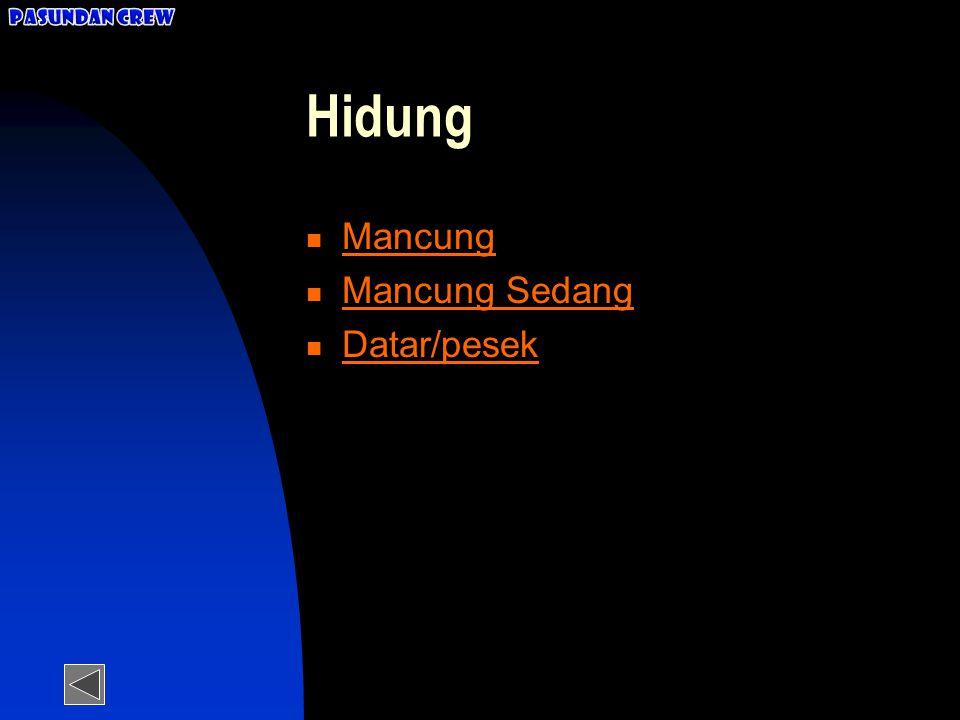 Pasundan Crew Hidung Mancung Mancung Sedang Datar/pesek