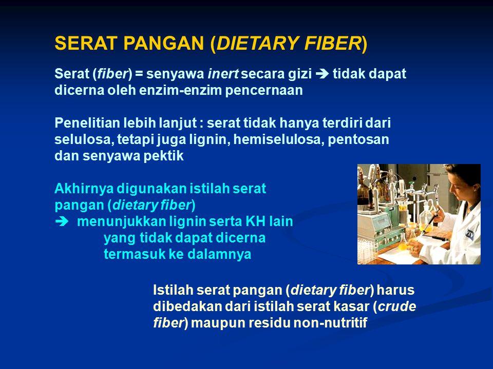 SERAT PANGAN (DIETARY FIBER)