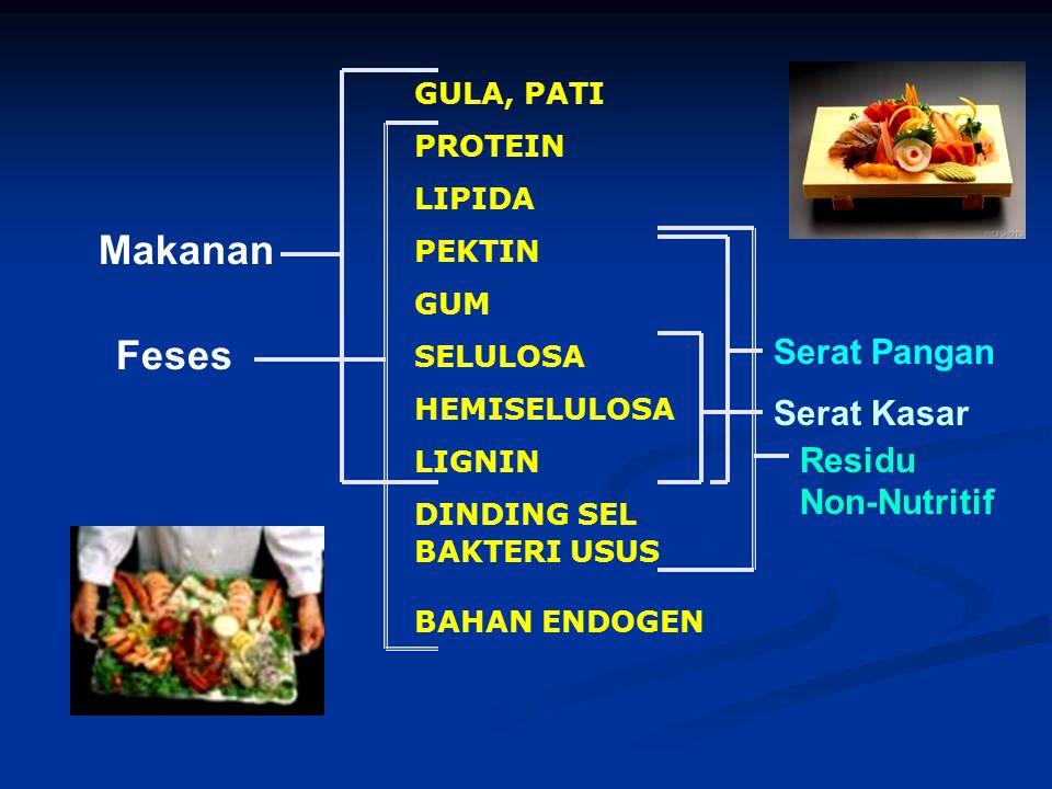 Makanan Feses Serat Pangan Serat Kasar Residu Non-Nutritif GULA, PATI