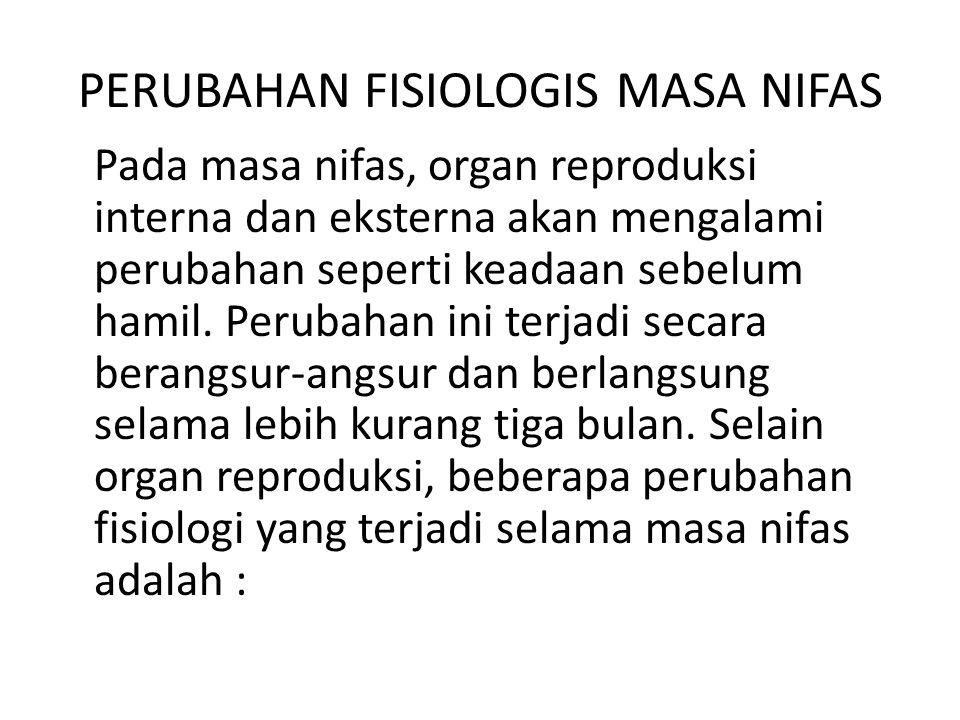 PERUBAHAN FISIOLOGIS MASA NIFAS