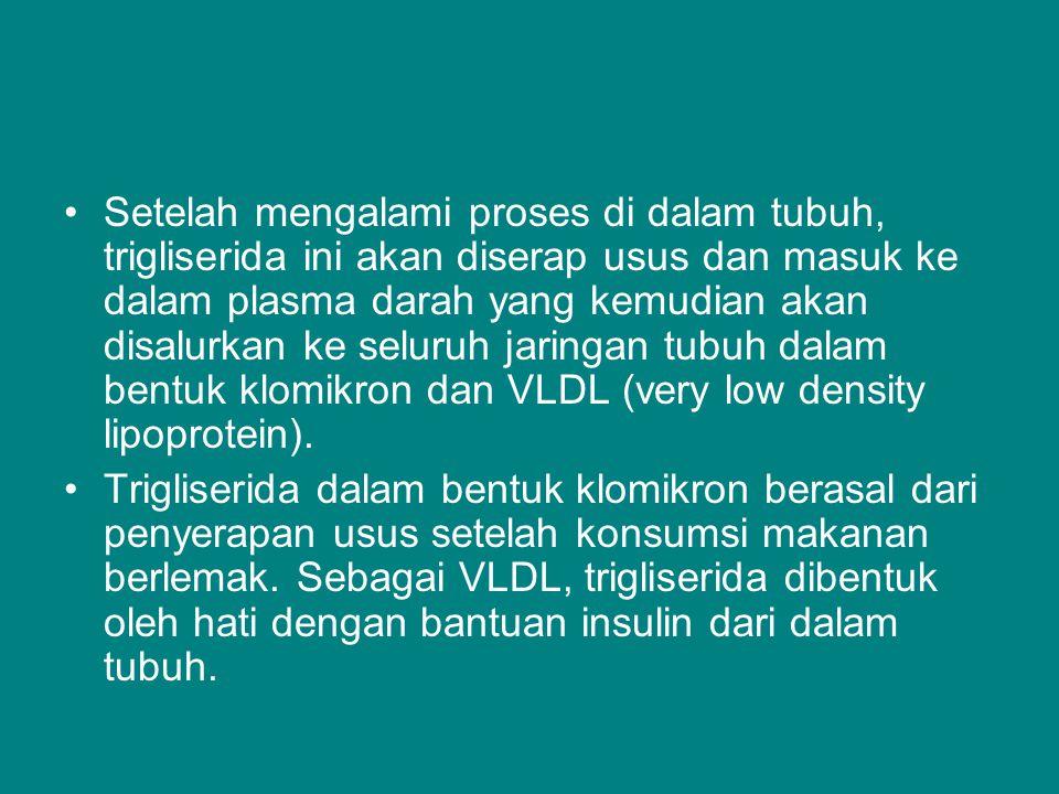 Setelah mengalami proses di dalam tubuh, trigliserida ini akan diserap usus dan masuk ke dalam plasma darah yang kemudian akan disalurkan ke seluruh jaringan tubuh dalam bentuk klomikron dan VLDL (very low density lipoprotein).