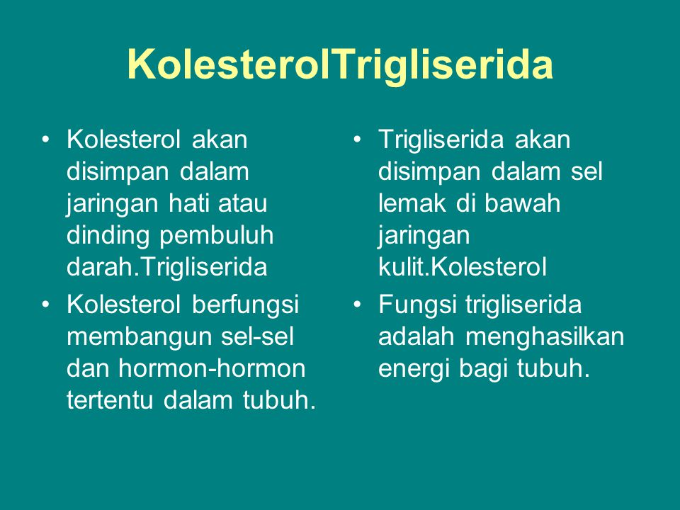 KolesterolTrigliserida