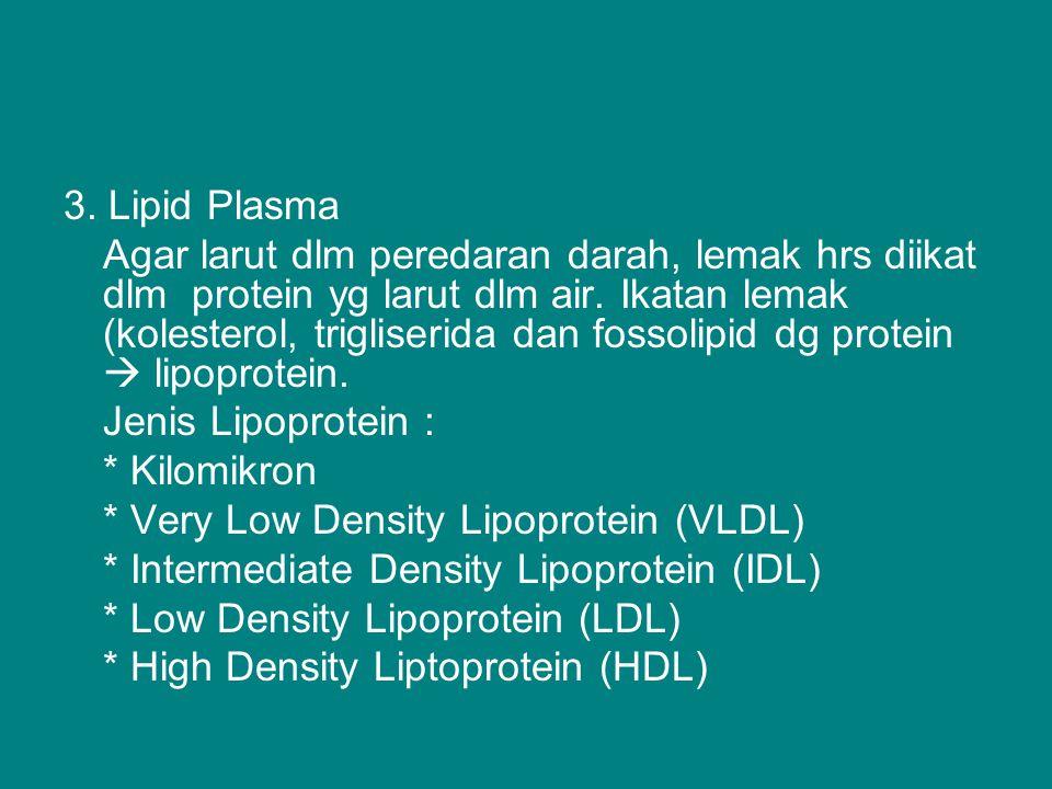 3. Lipid Plasma