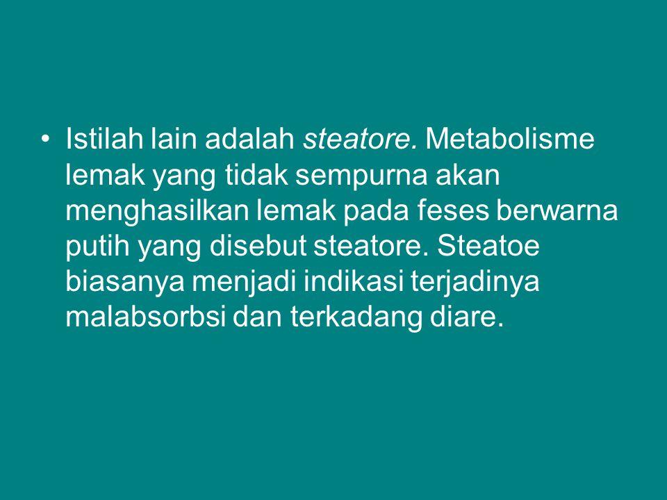 Istilah lain adalah steatore