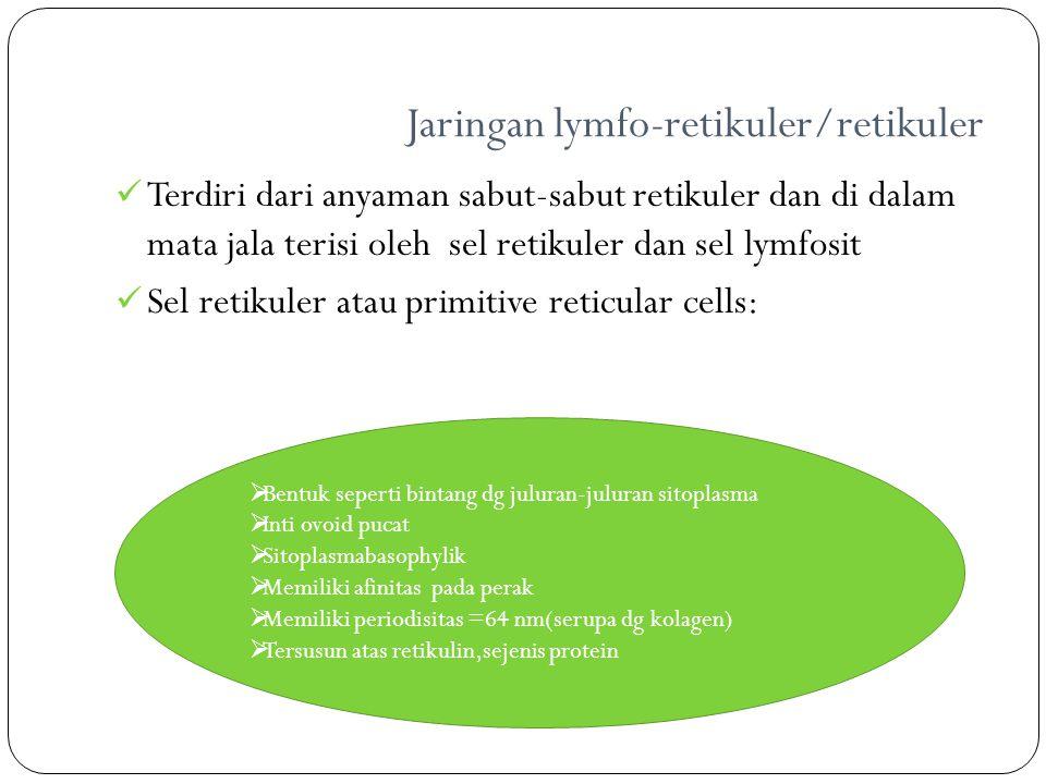 Jaringan lymfo-retikuler/retikuler