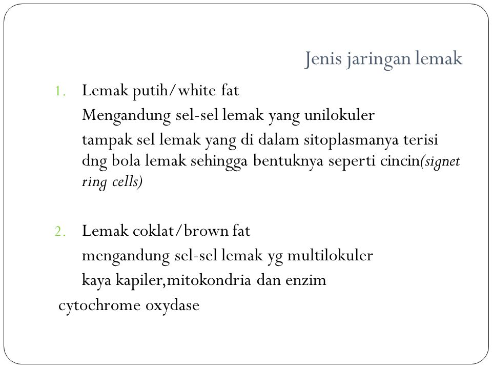 Jenis jaringan lemak Lemak putih/white fat