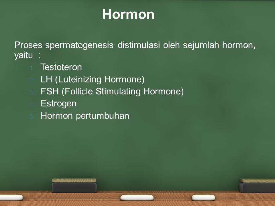 Hormon Proses spermatogenesis distimulasi oleh sejumlah hormon, yaitu : Testoteron. LH (Luteinizing Hormone)