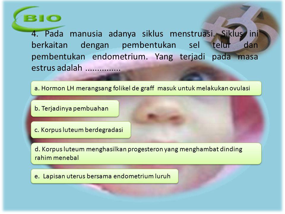 4. Pada manusia adanya siklus menstruasi