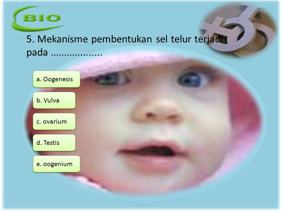 5. Mekanisme pembentukan sel telur terjadi pada ...................