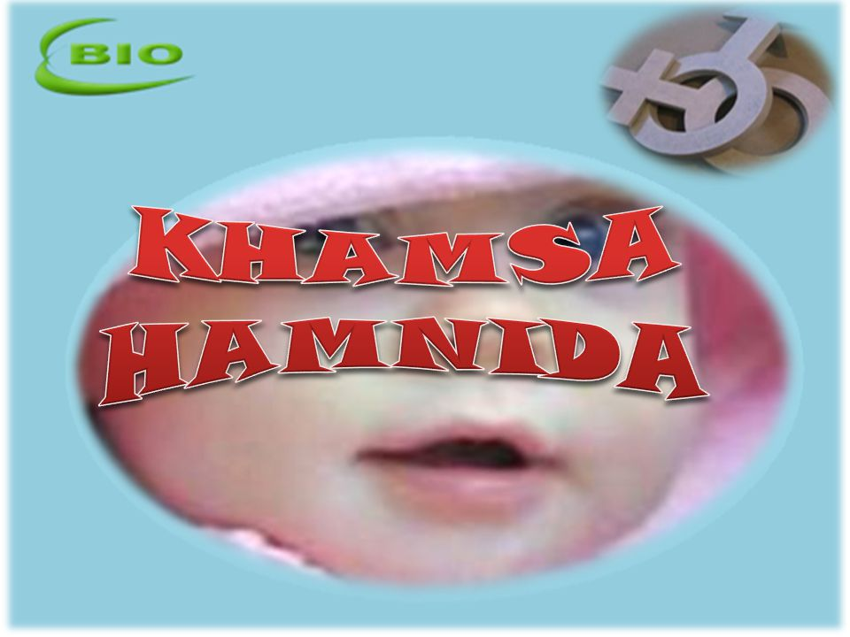 KHAMSA HAMNIDA