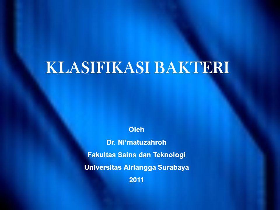 Fakultas Sains dan Teknologi Universitas Airlangga Surabaya