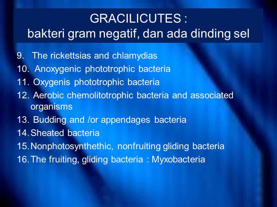 GRACILICUTES : bakteri gram negatif, dan ada dinding sel