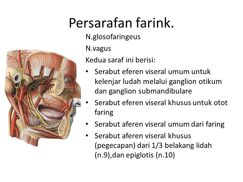 Persarafan farink. N.glosofaringeus N.vagus Kedua saraf ini berisi: