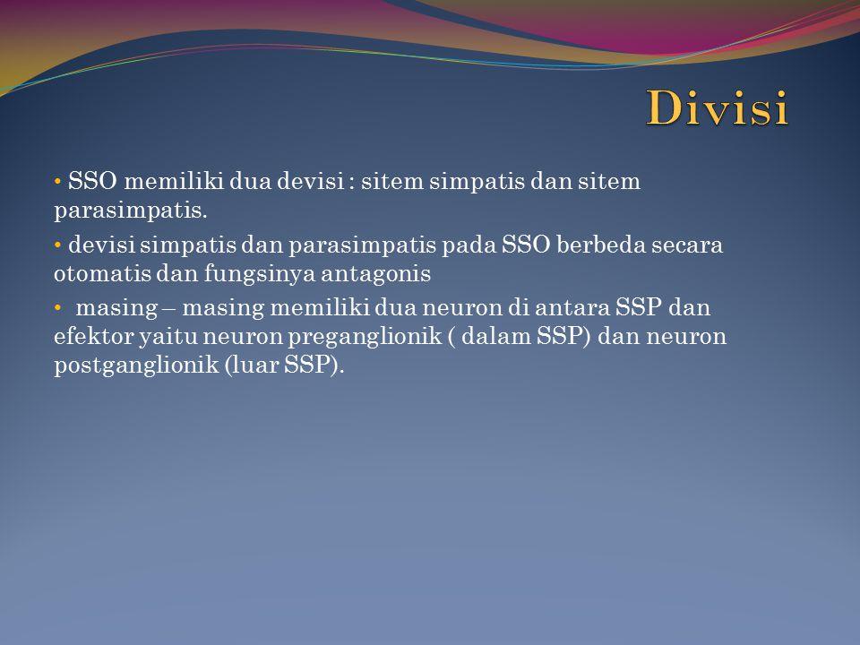 Divisi SSO memiliki dua devisi : sitem simpatis dan sitem parasimpatis.