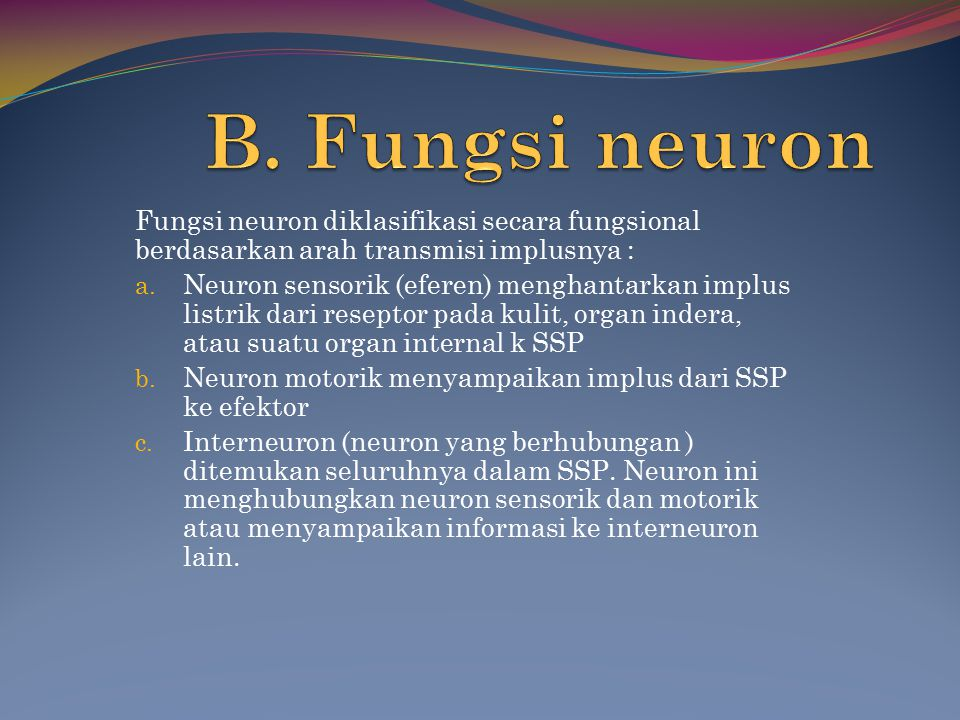 B. Fungsi neuron Fungsi neuron diklasifikasi secara fungsional berdasarkan arah transmisi implusnya :