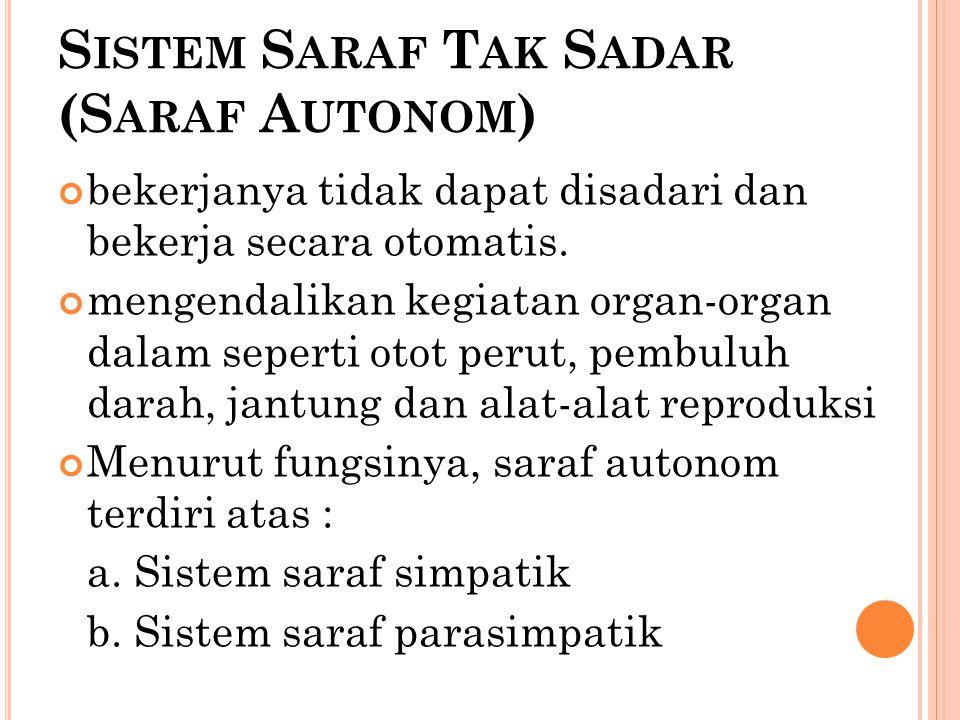 Sistem Saraf Tak Sadar (Saraf Autonom)