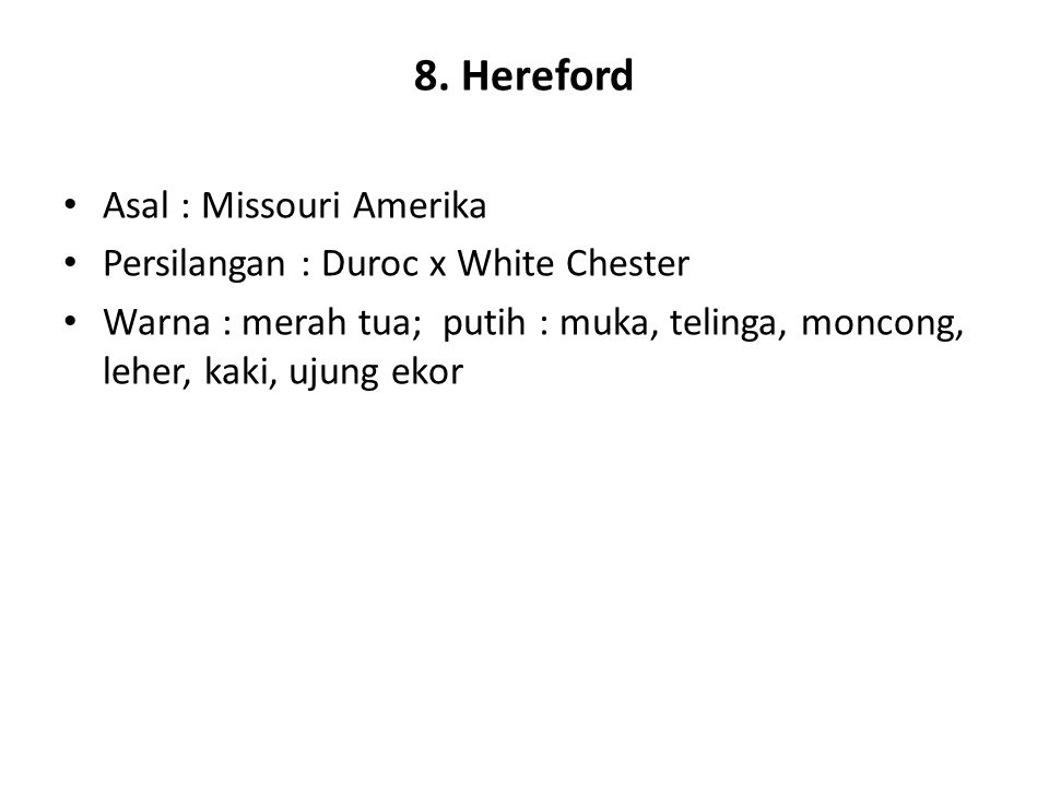 8. Hereford Asal : Missouri Amerika