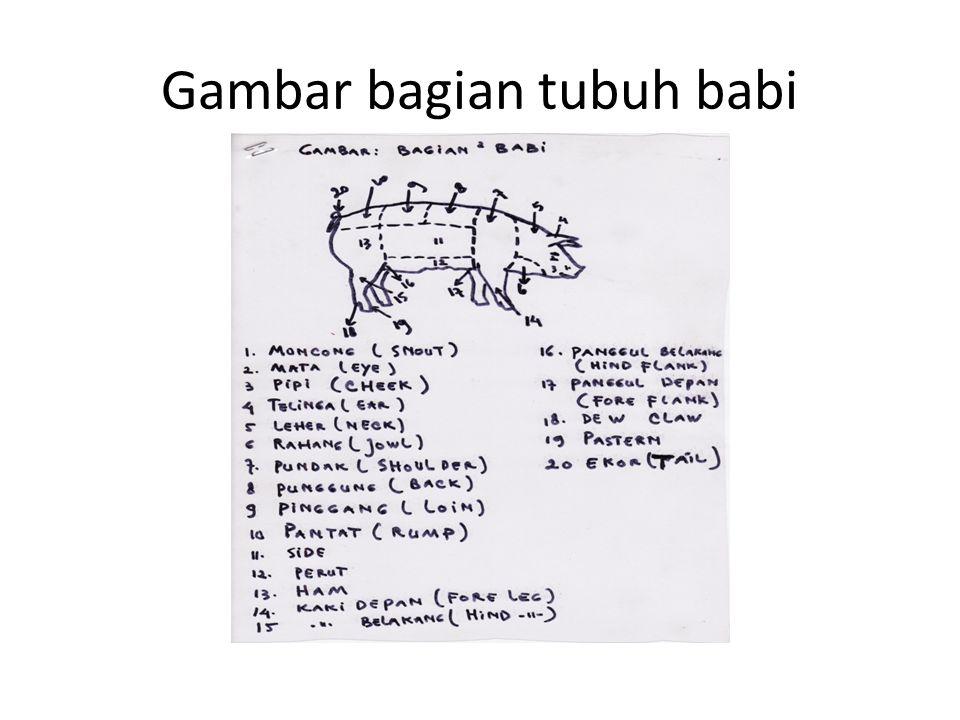Gambar bagian tubuh babi