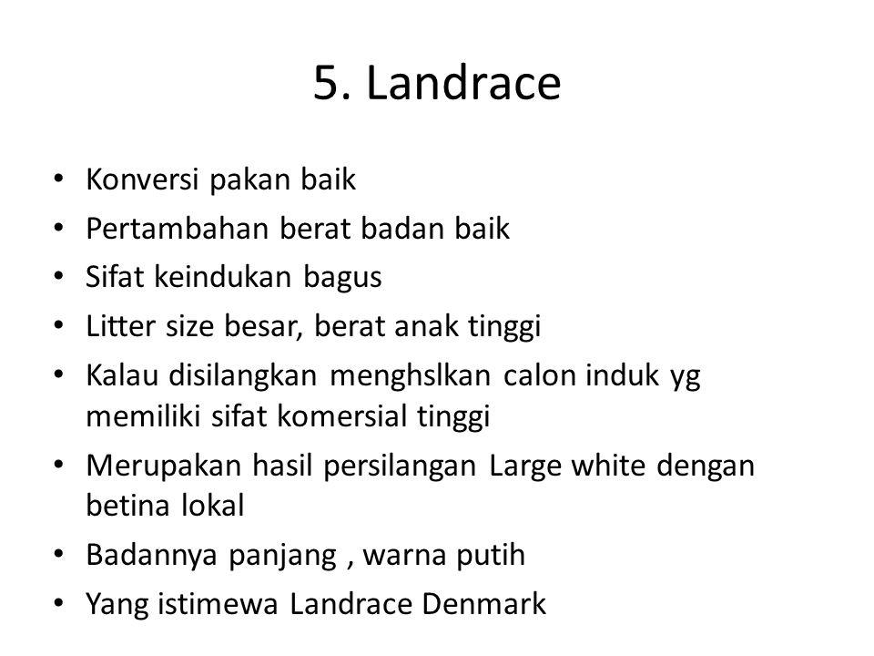 5. Landrace Konversi pakan baik Pertambahan berat badan baik