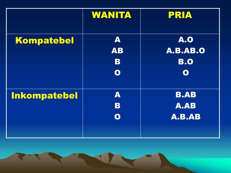 WANITA PRIA Kompatebel Inkompatebel A AB B O A.O A.B.AB.O B.O B.AB