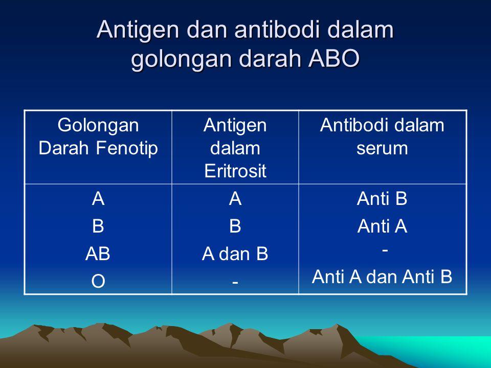 Antigen dan antibodi dalam golongan darah ABO