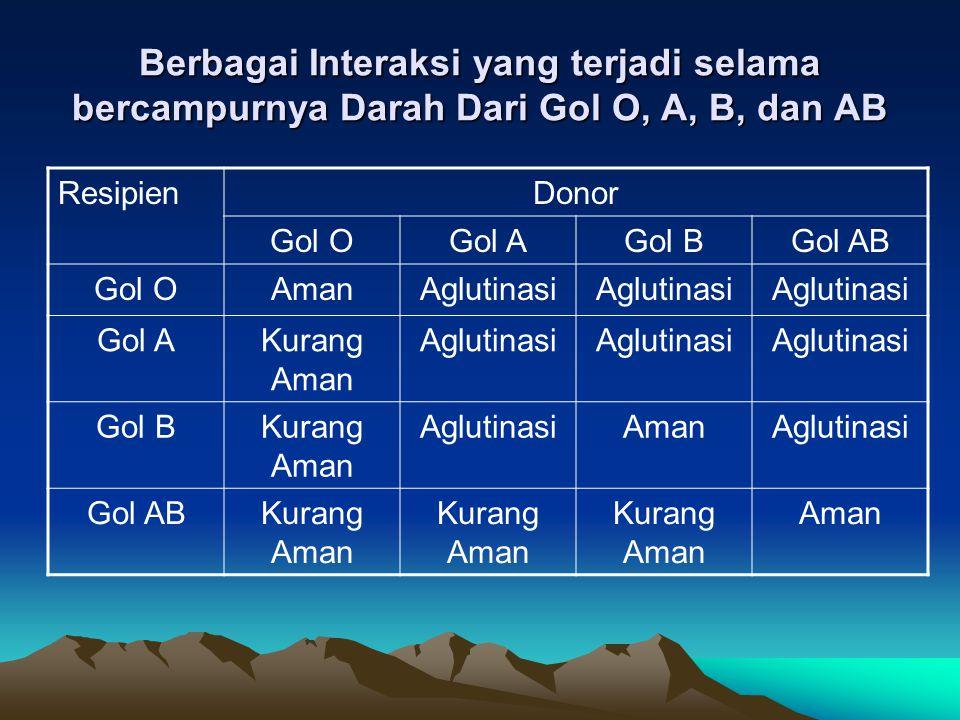 Berbagai Interaksi yang terjadi selama bercampurnya Darah Dari Gol O, A, B, dan AB