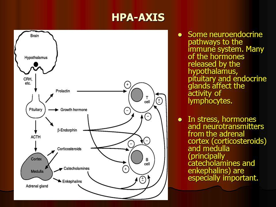 HPA-AXIS