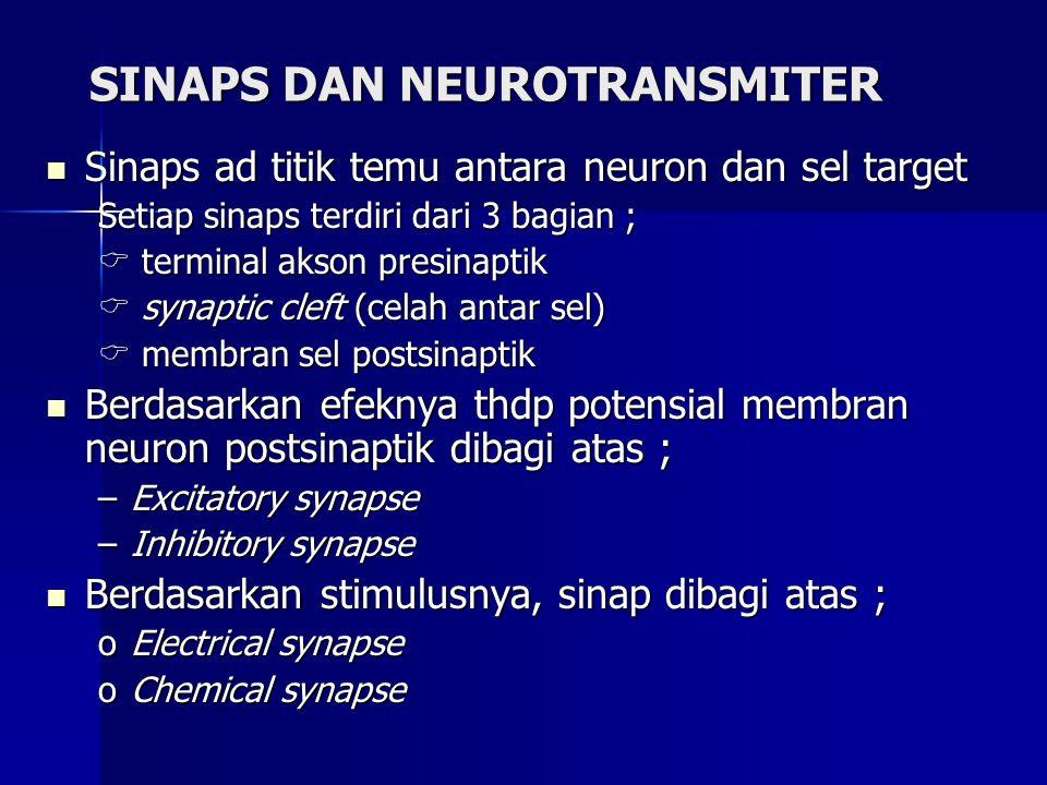 SINAPS DAN NEUROTRANSMITER