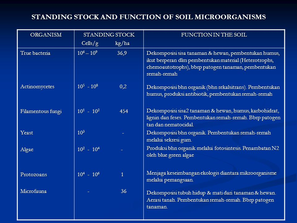 STANDING STOCK AND FUNCTION OF SOIL MICROORGANISMS