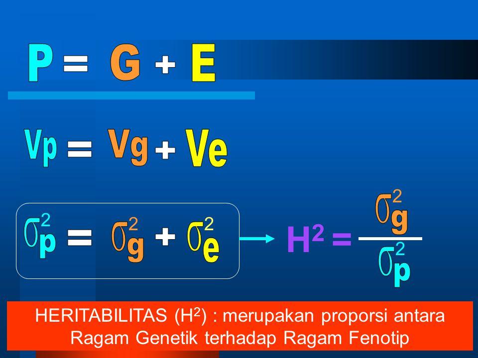 H2 = P G E = + Vp Vg Ve = + s g s p s g s e = + s p 2 2 2 2 2