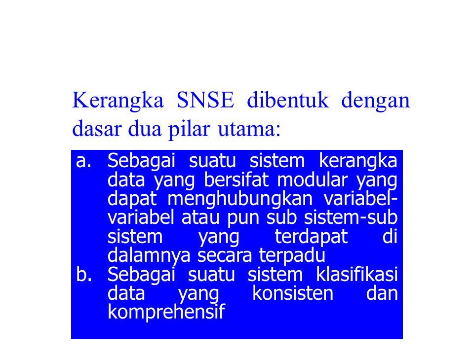 Kerangka SNSE dibentuk dengan dasar dua pilar utama: