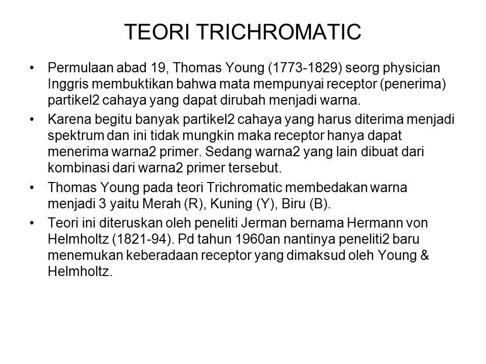 TEORI TRICHROMATIC