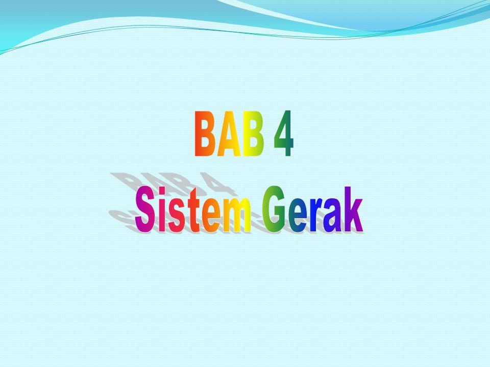 BAB 4 Sistem Gerak