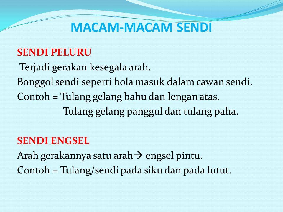 MACAM-MACAM SENDI