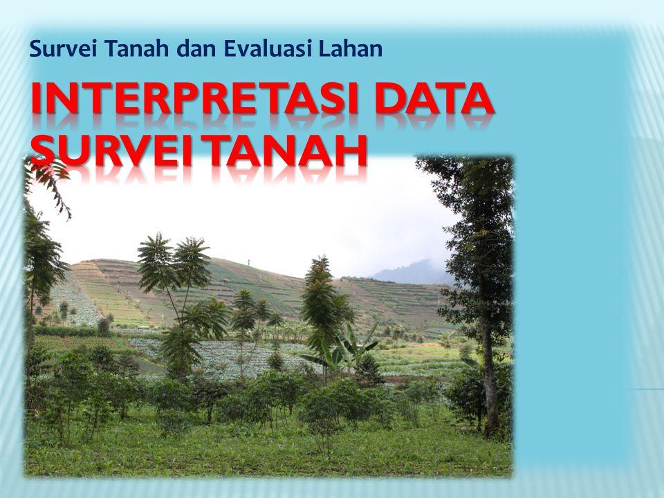 Interpretasi DATA Survei Tanah