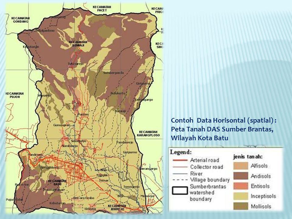 Contoh Data Horisontal (spatial) :
