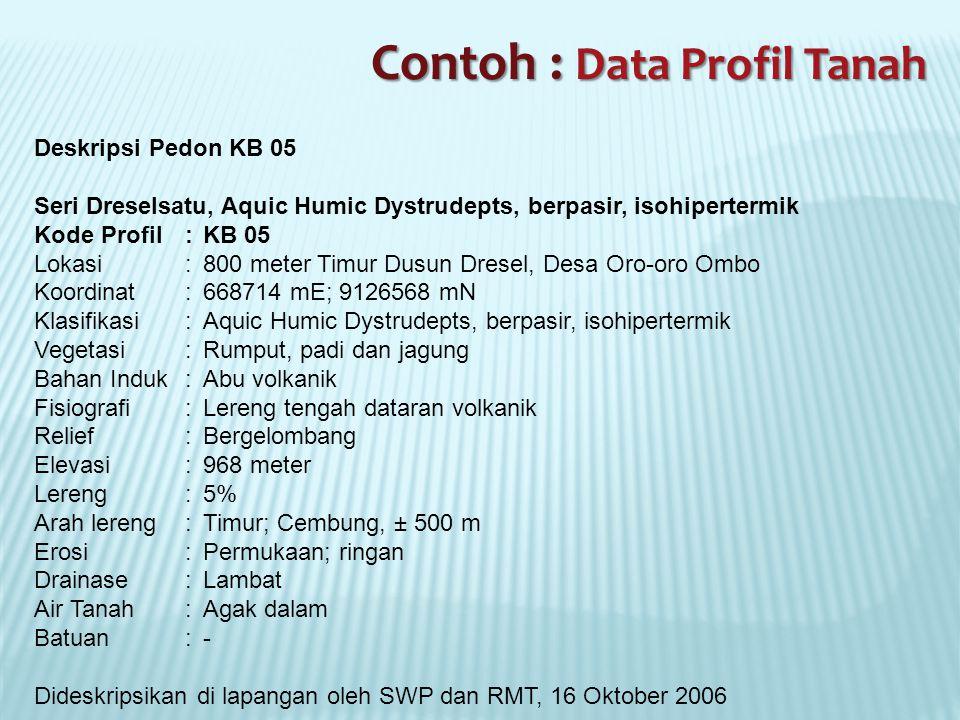 Contoh : Data Profil Tanah