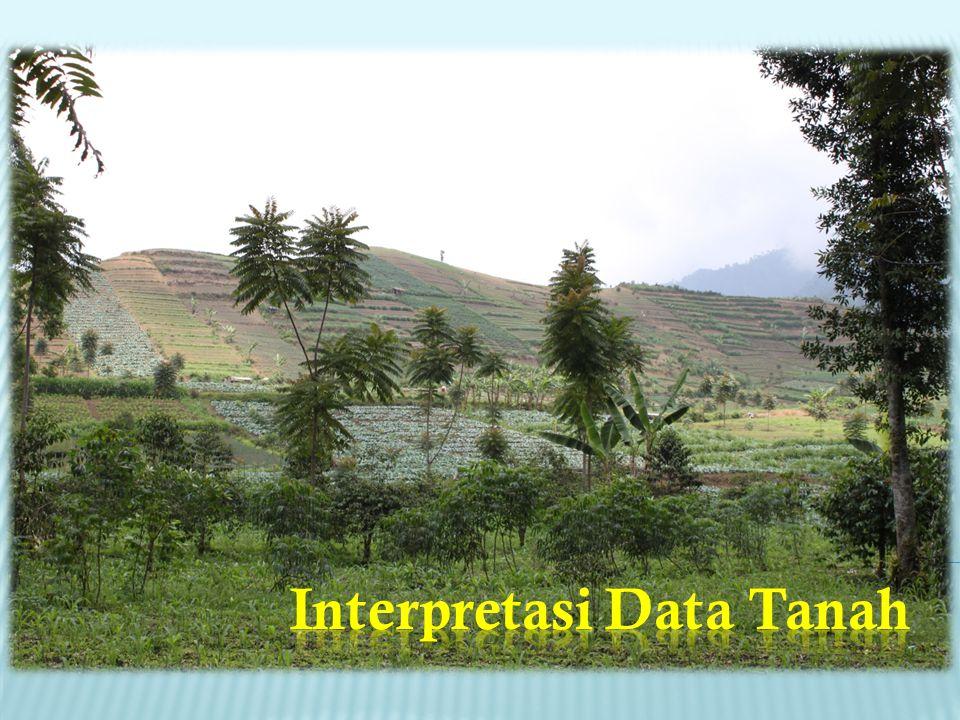 Interpretasi Data Tanah