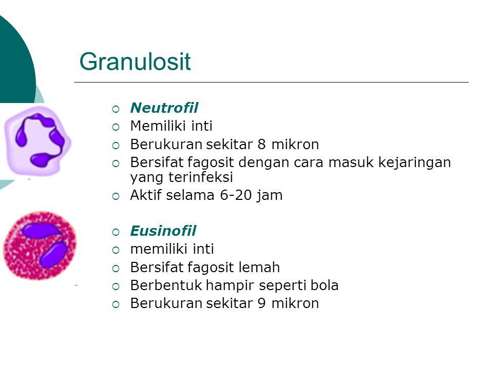 Granulosit Neutrofil Memiliki inti Berukuran sekitar 8 mikron