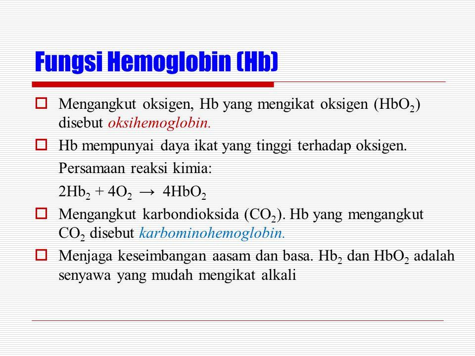 Fungsi Hemoglobin (Hb)