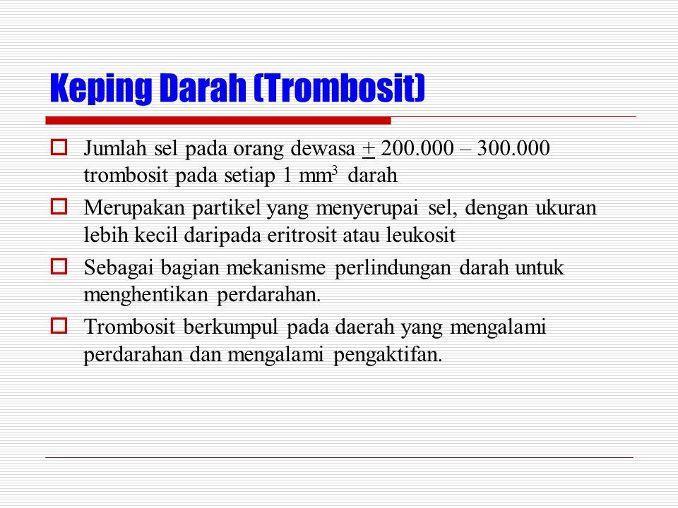Keping Darah (Trombosit)