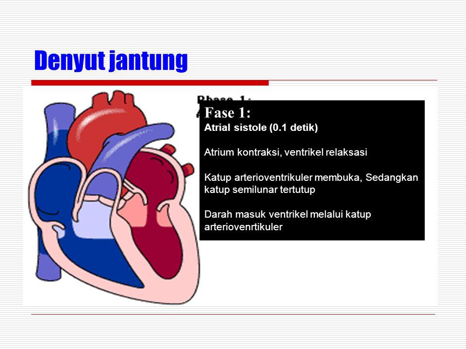 Denyut jantung Fase 1: Atrial sistole (0.1 detik)