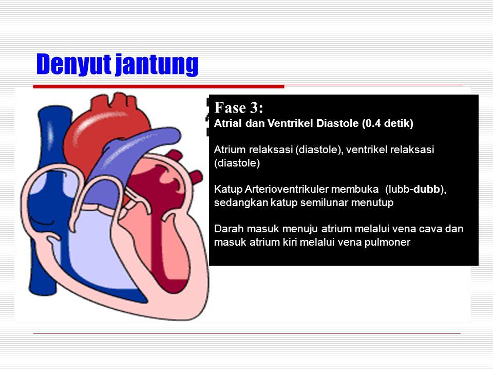 Denyut jantung Fase 3: Atrial dan Ventrikel Diastole (0.4 detik)