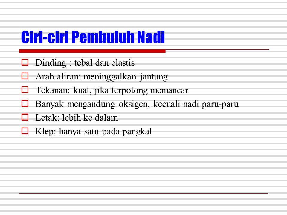 Ciri-ciri Pembuluh Nadi