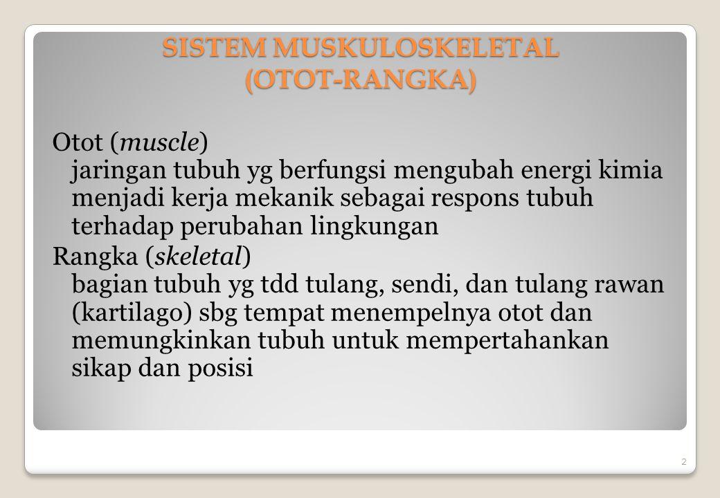 SISTEM MUSKULOSKELETAL (OTOT-RANGKA)