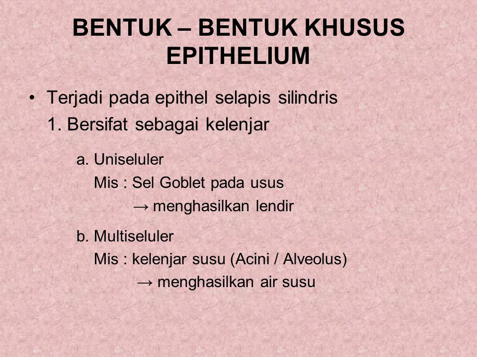 BENTUK – BENTUK KHUSUS EPITHELIUM