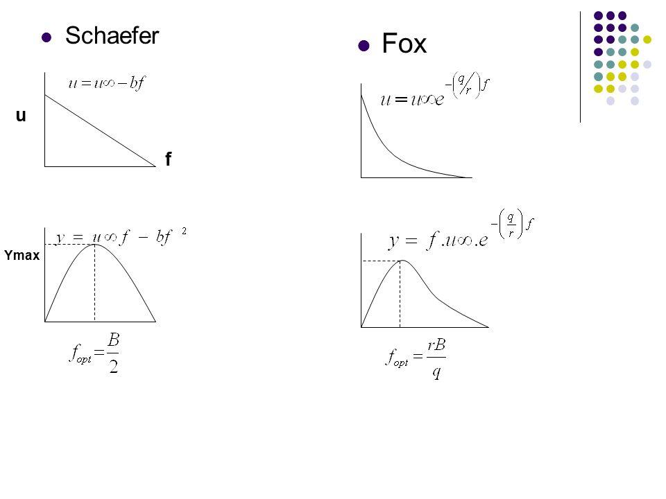 Schaefer Fox u f Ymax