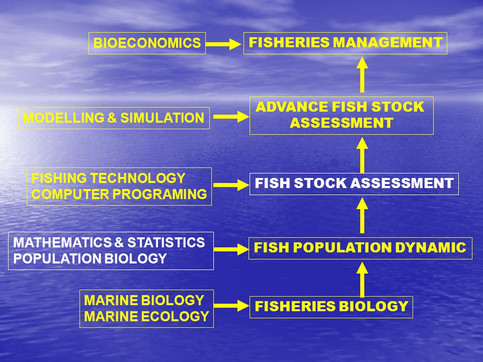 BIOECONOMICS FISHERIES MANAGEMENT. ADVANCE FISH STOCK. ASSESSMENT. MODELLING & SIMULATION. FISHING TECHNOLOGY.
