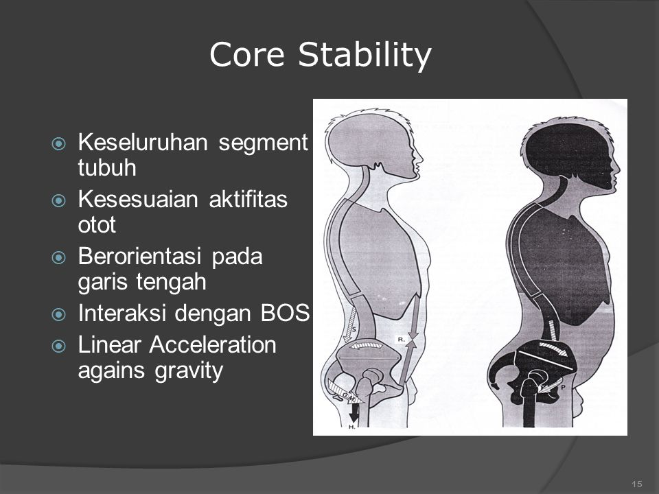 Core Stability Keseluruhan segment tubuh Kesesuaian aktifitas otot