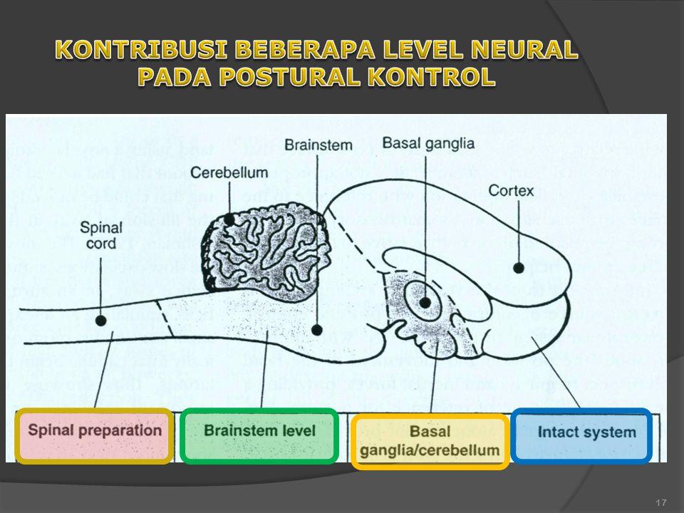 KONTRIBUSI BEBERAPA LEVEL NEURAL